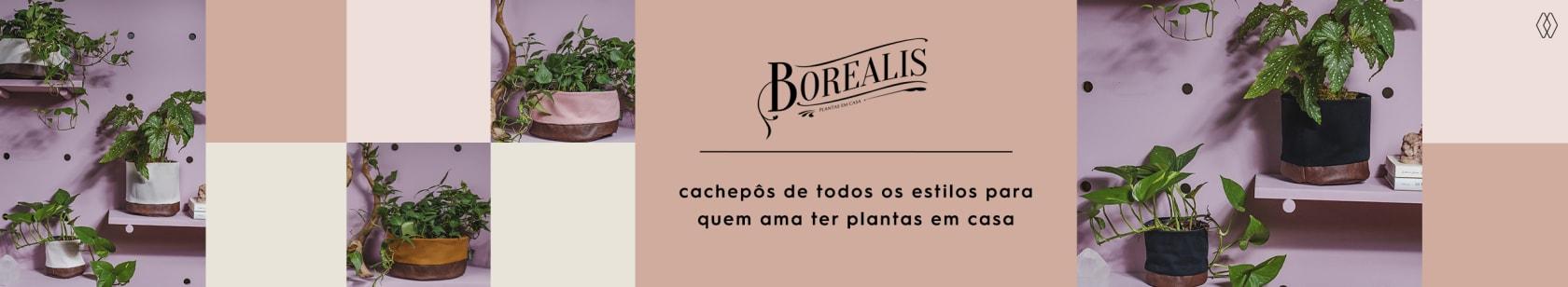 BOREALIS | AMARO