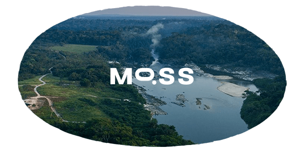 MOSS Carbon